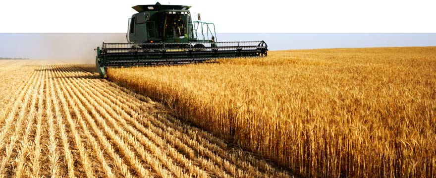 header_combine_agribusiness