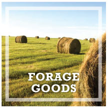 Classifieds_Forage_Goods